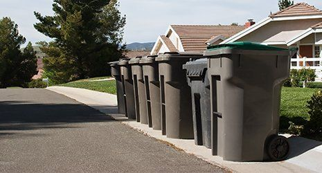 Garbage bins line up on a residential street