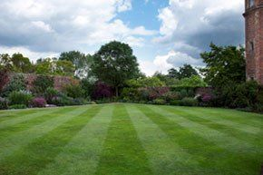 Landscaping - Clapham, Wandsworth - Joe Piazza Garden Maintenance - Landscaped Garden
