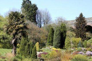 Creazione e manutenzione di giardini