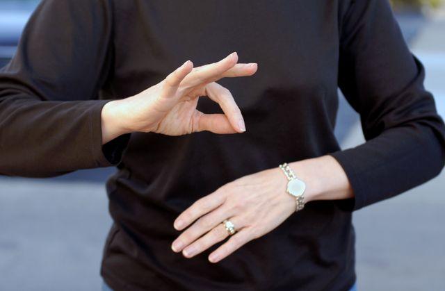 British Sign Language interpreters