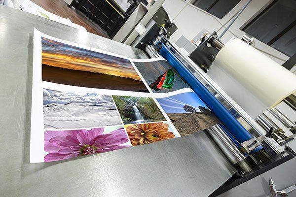 una stampa di immagini appena uscita dalla stampante