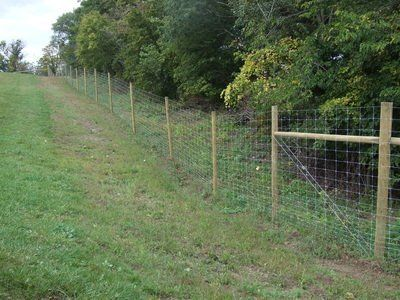 Stay-Tuff Wildlife Fencing