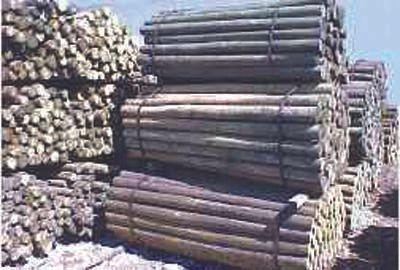 treated wood posts