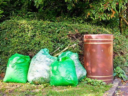Waste removal and garden cleaning