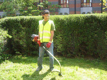 Garden maintenance for a beautiful outdoor space