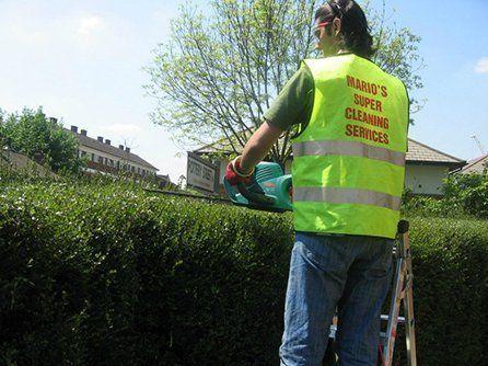 Excellent garden maintenance
