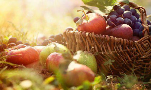 un cesto con della frutta e delle mele su un prato