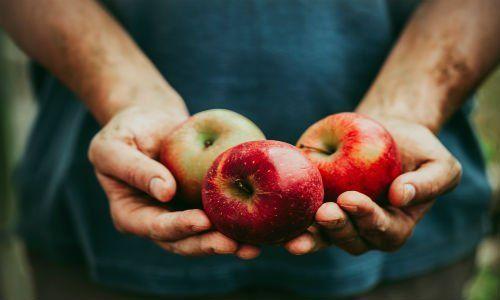 due mani che tengono tre mele rosse