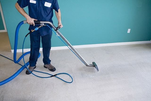 cleaning carpet in Auckland