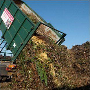 plant waste