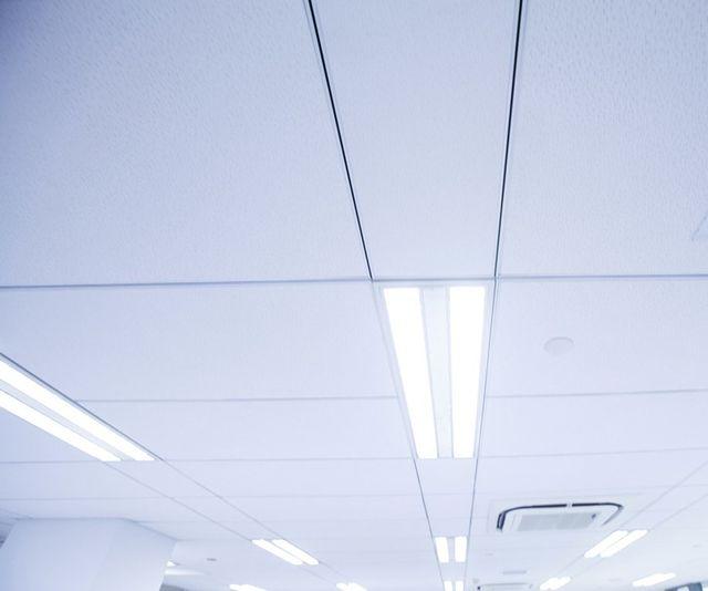 bernies trades ceiling