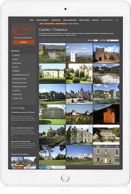 Website design on iPad Portrait