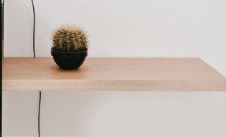 Tablon di legno con un cactus