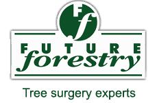 Future Forestry logo