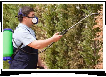 pest control companies Midland, TX