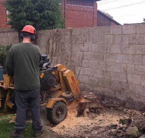 Dms Property Maintenance Folkestone