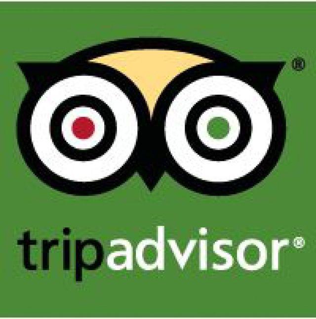 www.tripadvisor