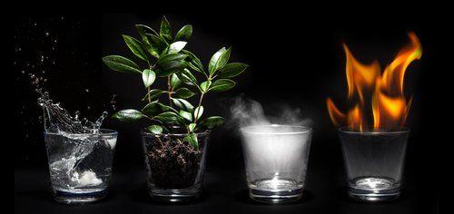 i quattro elementi raprresentati dentro un bicchiere