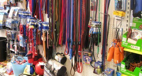 High Quality Pet Supplies And Food In Newtown Linford