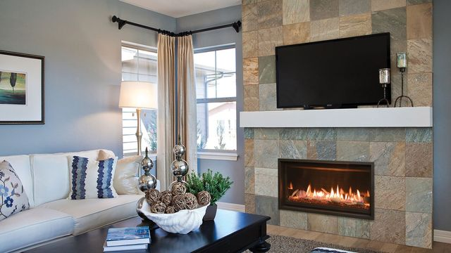 Pleasant Gas Propane Fireplace In Albany Troy Clifton Park Ny Complete Home Design Collection Barbaintelli Responsecom