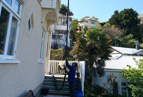 Roof cleaning and gutter vacuuming