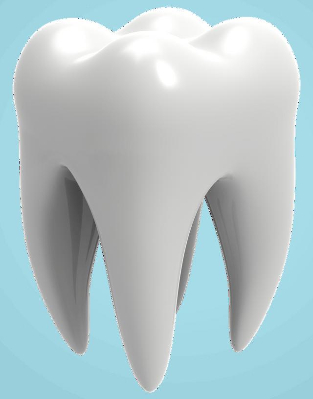 Dental Services In Colorado Springs Co