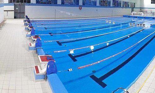 una piscina olimpionica