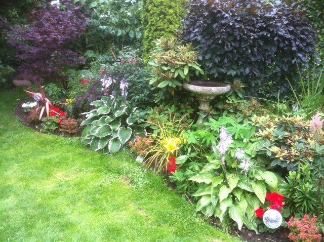 mature border and rockery plants and stone urn type planter