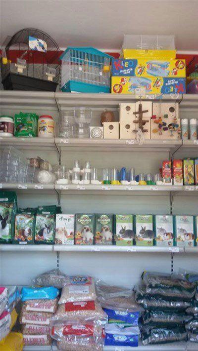 mangimi e accessori per animali in esposizione