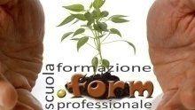 formazione, professionale, gratuita