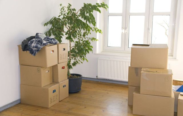 your boxes are in good hands with the reliable movers in Masterton