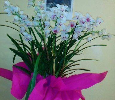 mazzo di fiori misto, mazzo di rose, fiori per ricorrenze speciali
