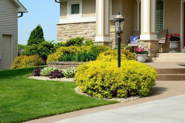 Landscaping Company in Troy, AL