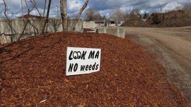 Landscaping Supplies - Spokane Valley, WA - Beauty Bark ...