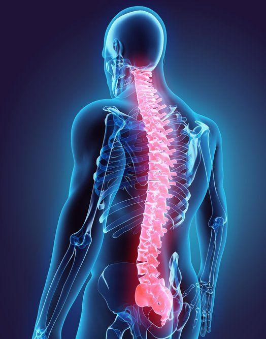 Chiropractor Services Westport, CT