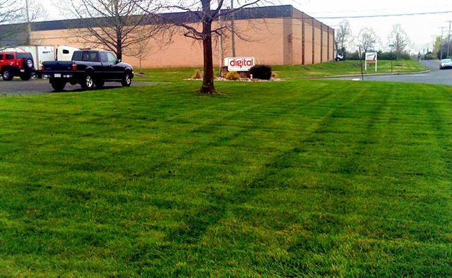 Commercial Lawn Care Philadelphia, PA