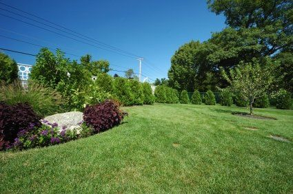 Image result for Lawn Care istock