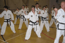 Seniors and Veterans Taekwon-Do