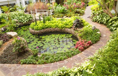 Public garden in Honolulu, HI