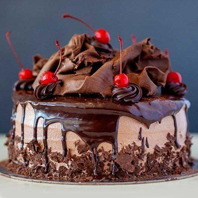 Frozen chocolate gateau
