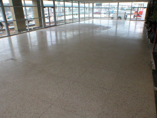Terrazzo Polishing Houston Tx All The Marbles Inc