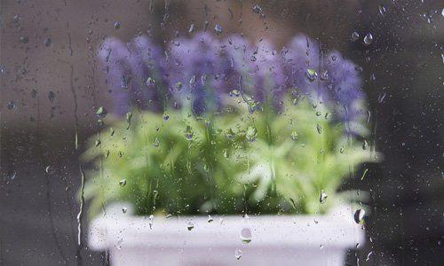 glass condensation