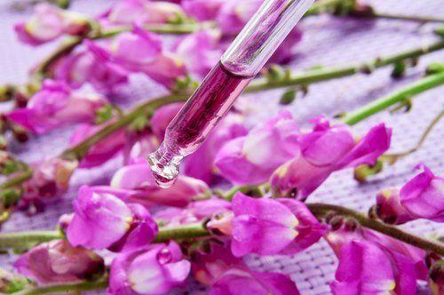 un contagocce con essenza di fiori di ginestra e di alcuni fiori rosa