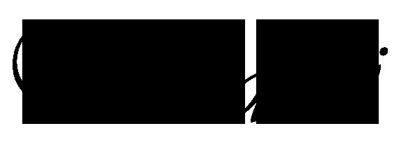 Vivaldi Company Logo
