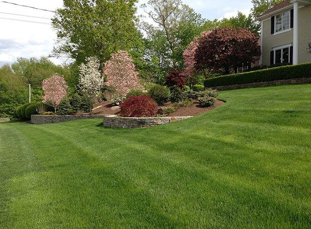 Landscape Design in Westport, CT