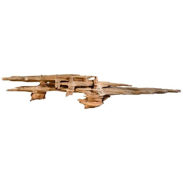 Large 10' Organic Driftwood Wall Hanging
