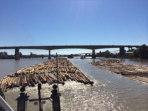Logs being towed by Quadrant Towing