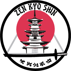 Find out about ZKS Martial Arts