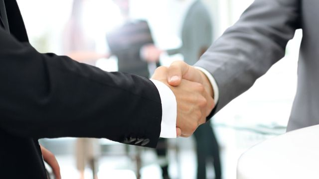 Two professional people  shaking hands
