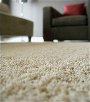 Carpet Cleaner amp Fitter York A Cleaning Services
